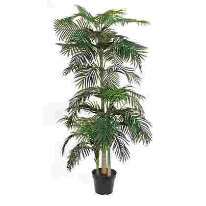 Areca palm Verde en plastico maceta  Poliester