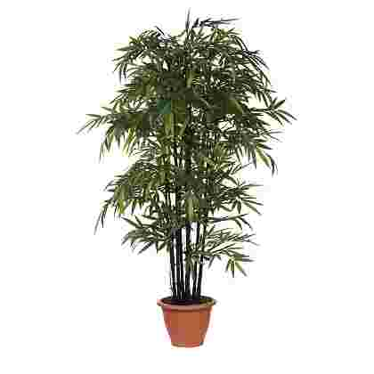 Bamboo Verde en maceta Campana Terra d37cm  Poliester