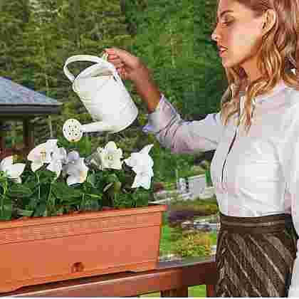 Jardinera con plato