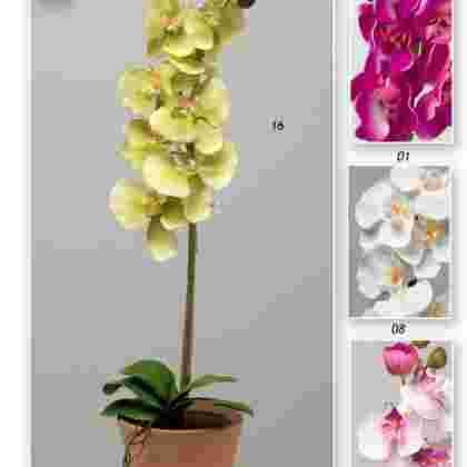 Maceta orquideas  75 cm.