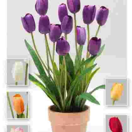 Maceta tulipanes  41 cm.