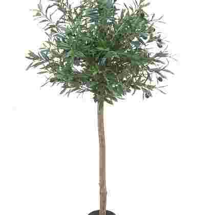 Olijfboom topiary h120cm p groen