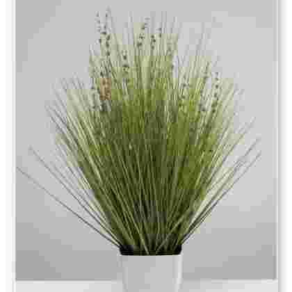 Planta lavanda en maceta 61 cm.