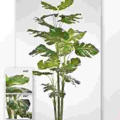Planta pothos con maceta 1.20 m