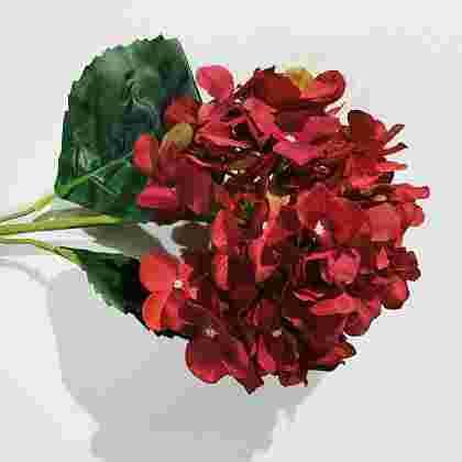 Vara hortensia diam cabeza 22cm
