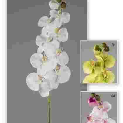 Vara orchid garden 97 cm
