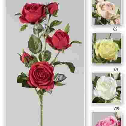 Vara rosa garden x 5  62 cm.