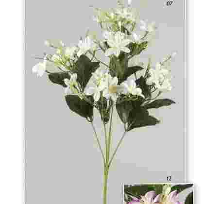 Vara star flower  80 cm.